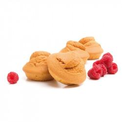 Madeleine saveur Fruits Rouges